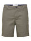 Straight Fit Flex Chino Shorts in Green